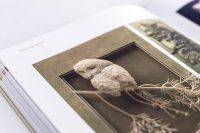 Фото работ книги для дизайнеров Бумагопластика автор Салтыкова Г.М.