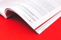 """Элементы дизайна внутреннего блока книги Фабрика союзных смыслов """"Союзный нарратив 2050"""""""