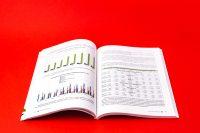 """Разворот книги с графиками и таблицами Фабрика союзных смыслов """"Союзный нарратив 2050"""""""