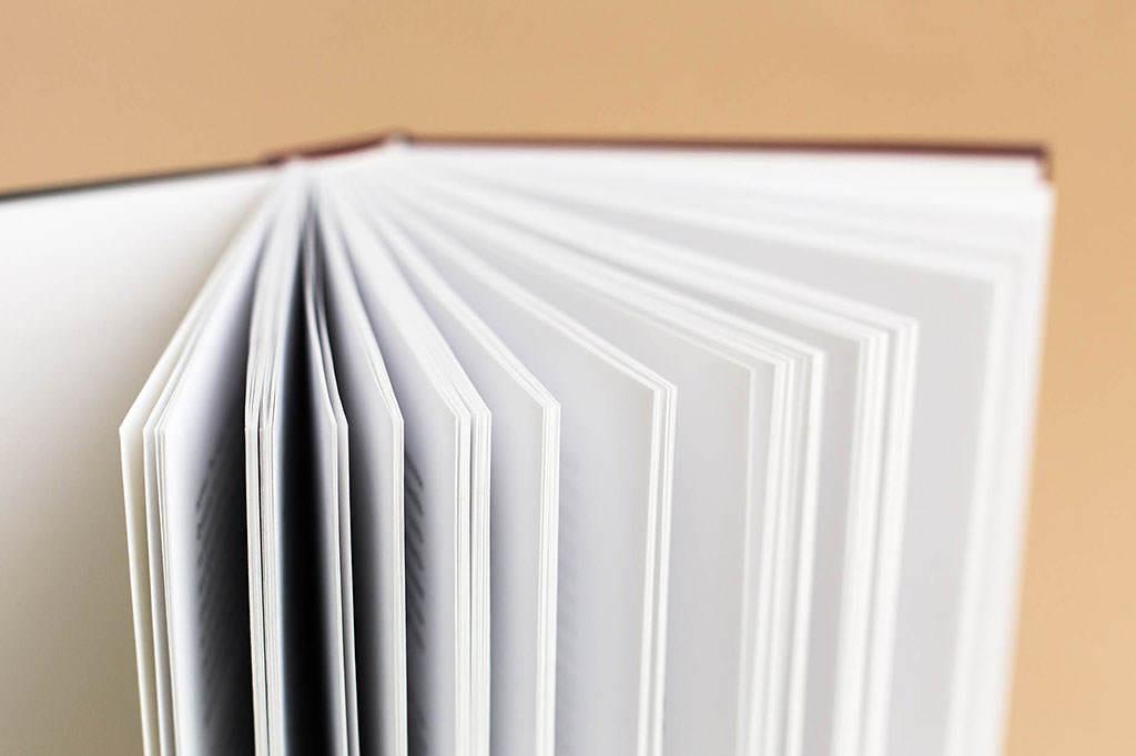 Страницы книги XIX век: события и люди - автор Коновалов Юрий-6