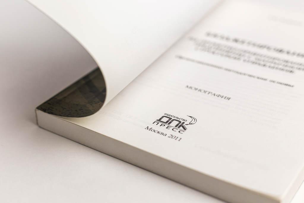 Титульный лист книги Бюджетирование на проектно-ориентированном предприятии с матричной структурой управления: организационно-методические основы
