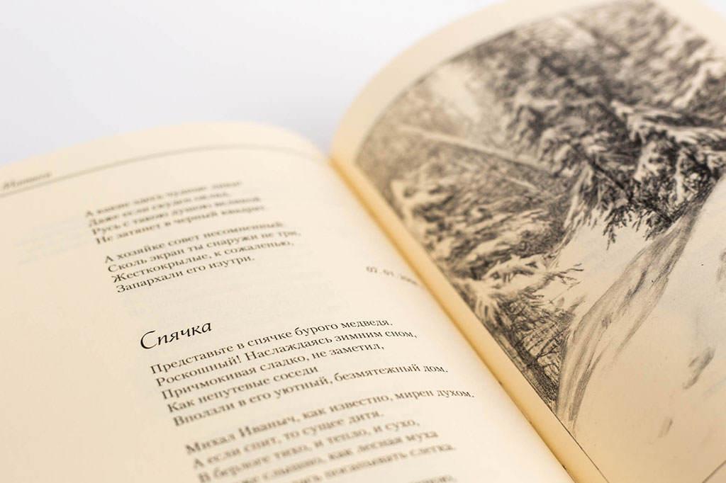 """Оформление блока книги С. Матвеев """"На высоких берегах"""" Стихи, баллады, басни"""