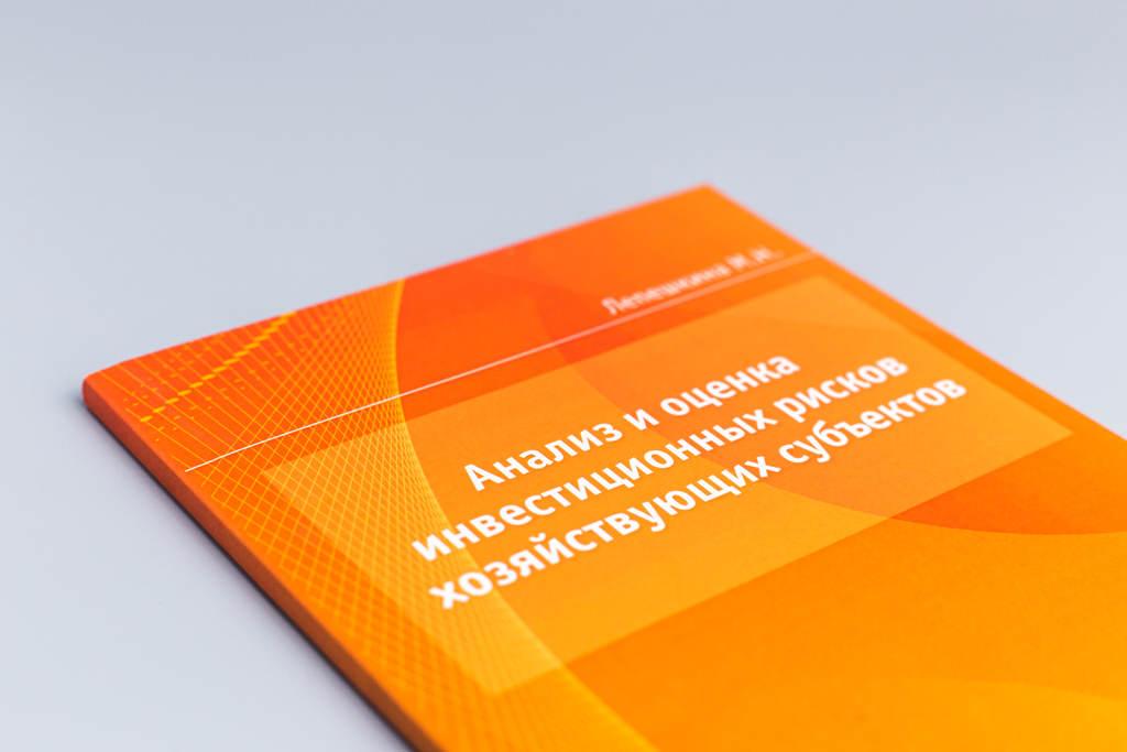 Дизайн обложки книги Анализ и оценка инвестиционных рисков хозяйствующих субъектов Лепешкина М.Н.
