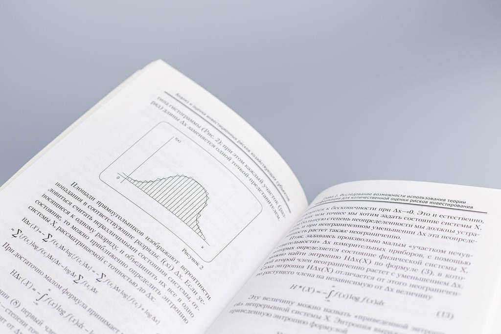 Верстка блока книги Анализ и оценка инвестиционных рисков хозяйствующих субъектов Лепешкина М.Н.