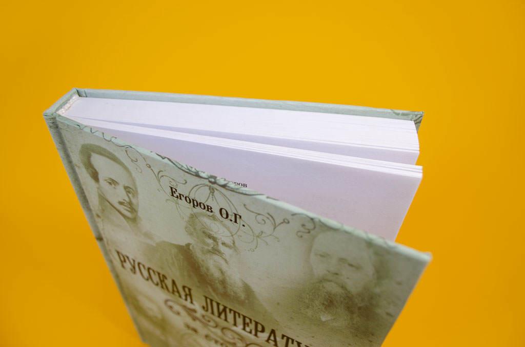 Монография Русская литература за сто лет 1800–1900
