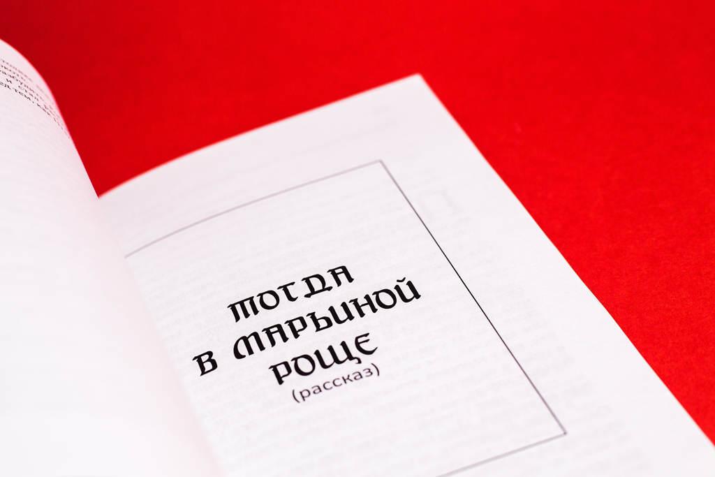 Начало главы книги Коллекционер. Андрей Евпланов