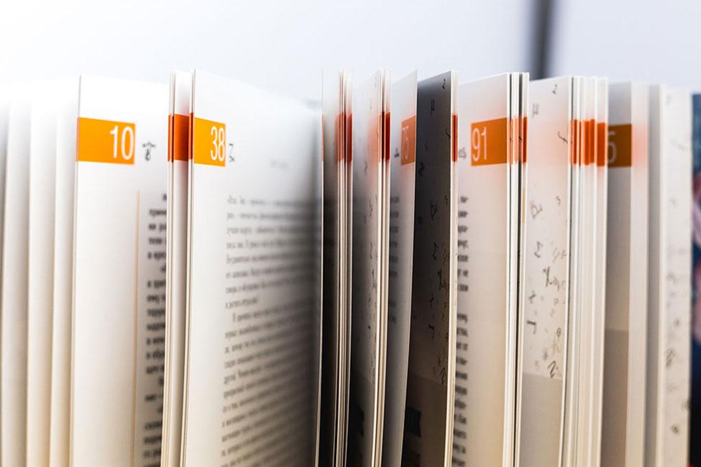 Элементы оформления страниц книги Лиор Сушард
