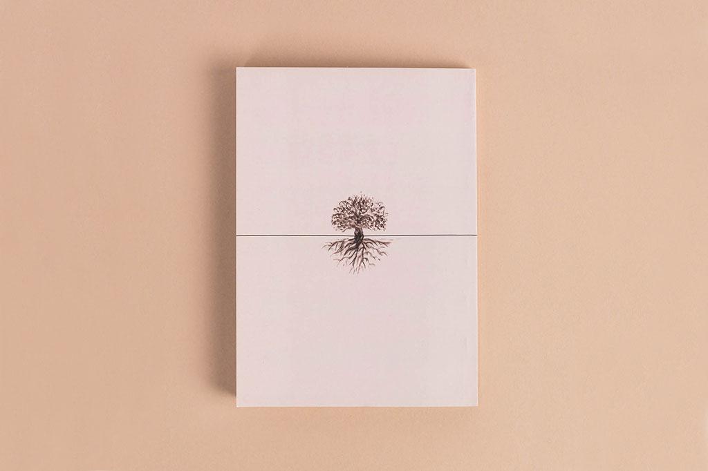 Оборот обложки книги стихов Земные стебли