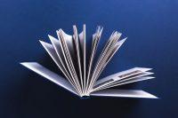 Книга Клиническая флебология / Под редакцией Ю.Л. Шевченко, Ю.М. Стойко