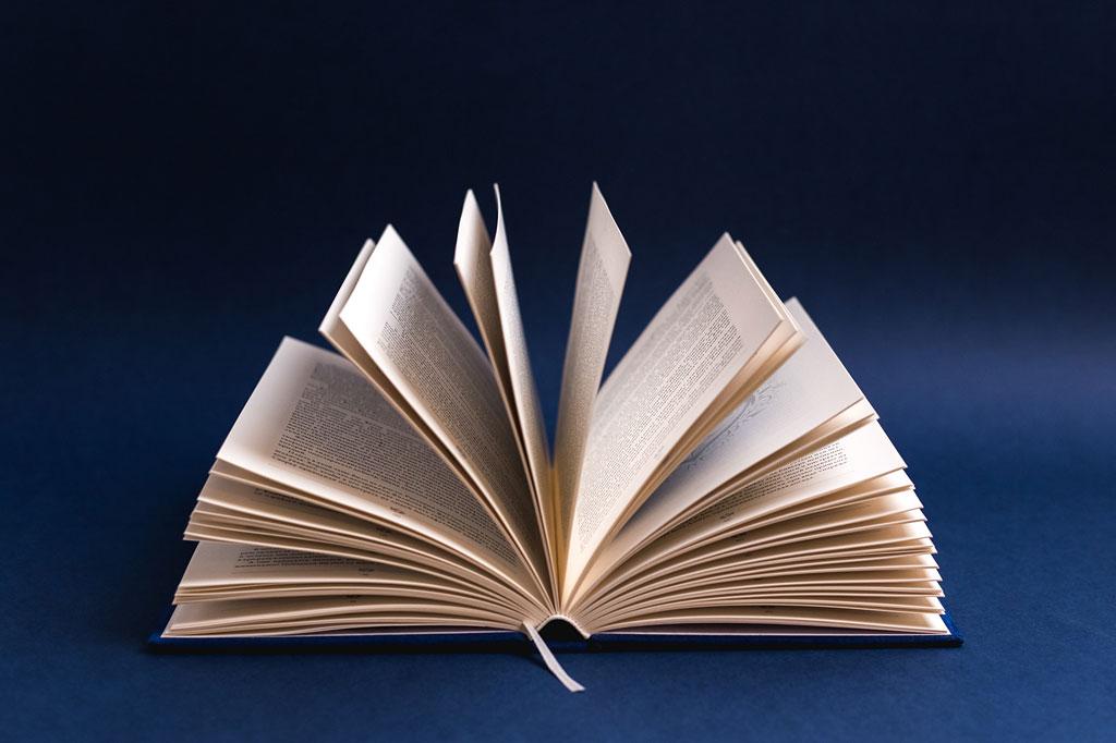 Красивая подарочная книга из алькантары с тиснением Живое море