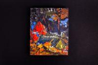 Обложка книги - Валерий Лебедко - художник педагог ученый