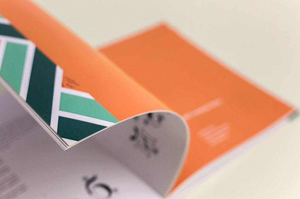 Оформление книги Г.М. Салтыкова - Шрифт - учебное пособие для дизайнеров