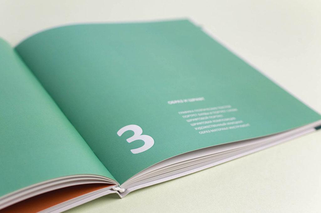 Оформление шмуцтитула книги Г.М. Салтыкова - Шрифт - учебное пособие для дизайнеров
