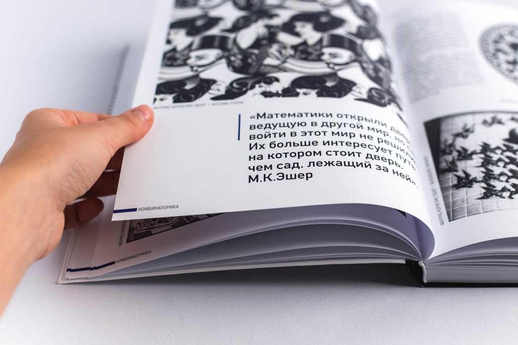 Интегральный переплет книги Проект Правило Парадокс Салтыкова Г.М.