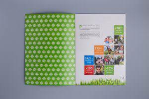 Дизайн блока рекламного буклета А4 Республика Поленово