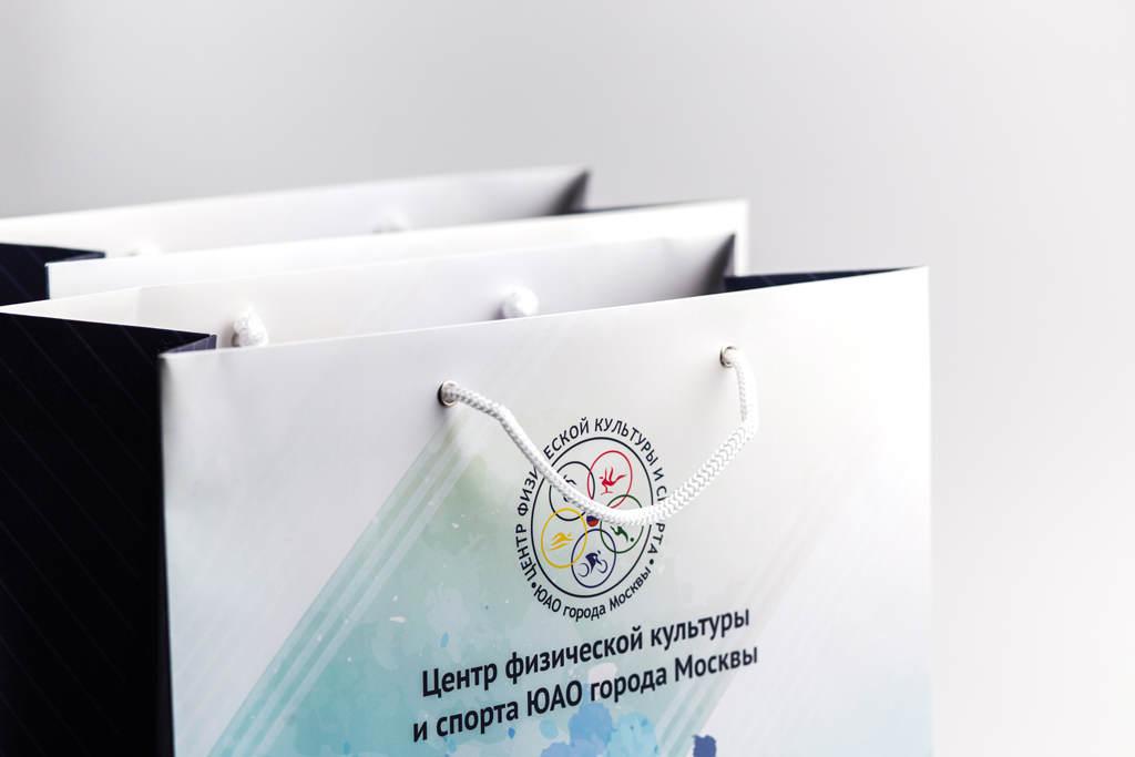 Элементы оформления пакета ЦФКиС ЮАО города Москвы
