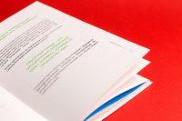 Страницы книги Свой путь: от проблемы к решению