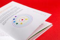 Графические элементы оформления книги Свой путь: от проблемы к решению