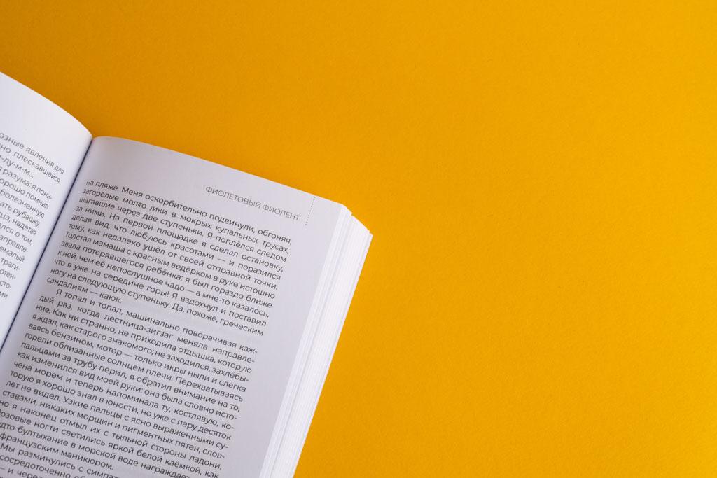 Оформление блока книги Этюдник автор Алексей Пищулин