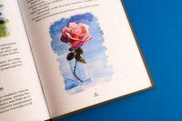 Иллюстрации блока книги Тайны непроходимого леса